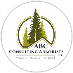 ABC Consulting Arborists – Spokane, WA